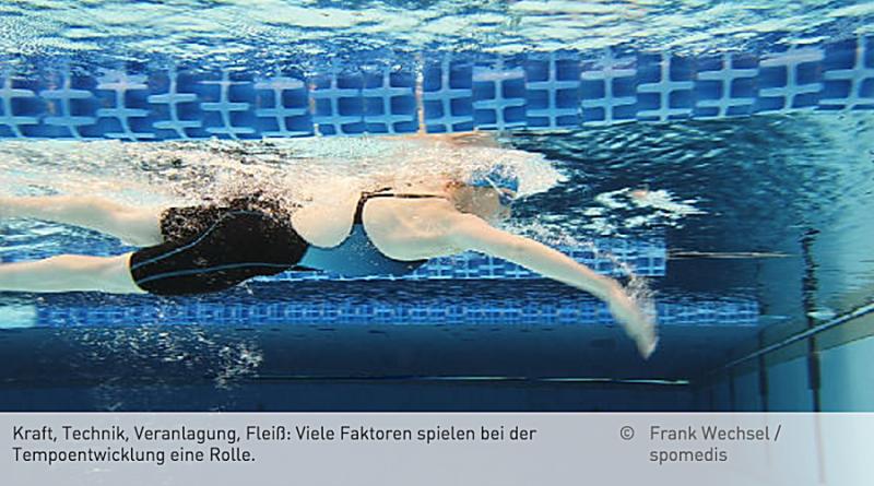 technik brustschwimmen beinschlag